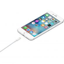 Кабель Apple Lightning to USB MD818
